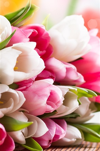 iPhone Wallpaper Pink and white tulip flower bouquet
