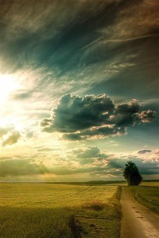iPhone Wallpaper Plains landscape, grass, fields, road, tree, sky clouds, sun rays