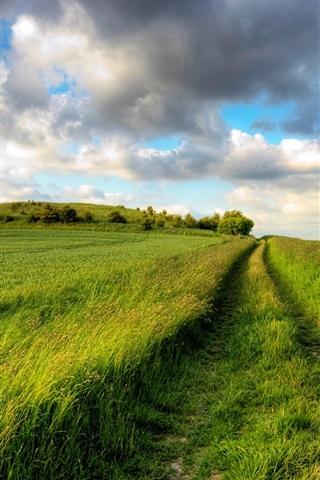 iPhone Wallpaper Summer fields, green, road, cloudy sky, endless