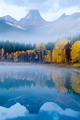 iPhone Wallpaper The autumn fog forest lake morning