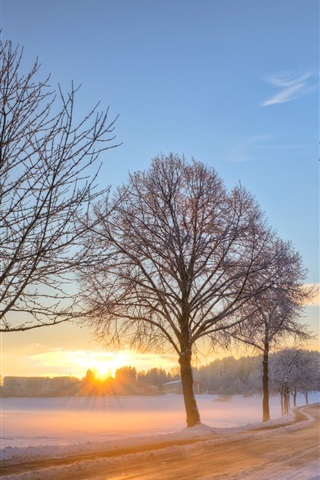 iPhone Wallpaper Germany winter snow landscape, road, trees, dawn, sunrise