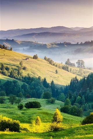 iPhone Wallpaper Nature landscape, sunrise, hills, trees, grass, fog