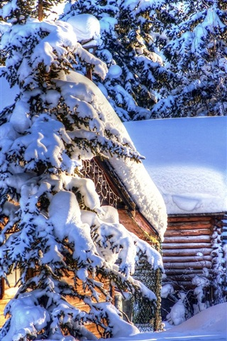 iPhone Wallpaper Alaska winter landscape, snow, forest, spruce, huts