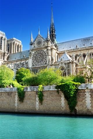 iPhone Wallpaper France, Paris, Notre Dame, the Seine river, water, blue sky, summer