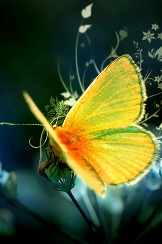 iPhone Wallpaper Art design yellow butterfly