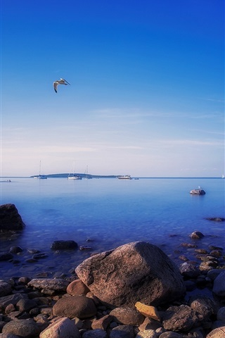 iPhone Wallpaper Awenda Provincial Park, Ontario, Canada, rocks, gulls, evening