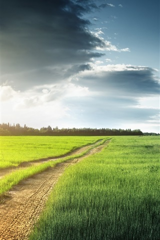 iPhone Wallpaper Nature scenery, fields, grass, trees, clouds, road