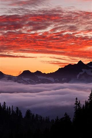 iPhone Wallpaper USA, Oregon, mountainous, forest, sky, sunset