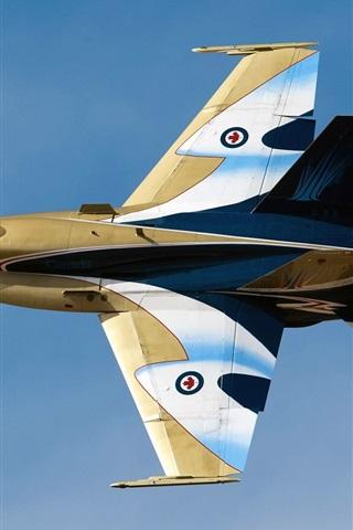 iPhone Wallpaper McDonnell Douglas, CF-18 Hornet multi-purpose fighter