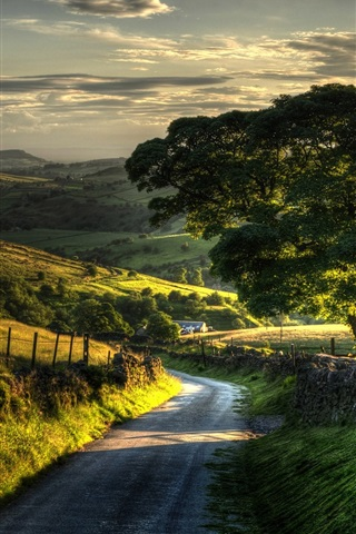iPhone Wallpaper Countryside nature scenery, fence, hills, road, trees