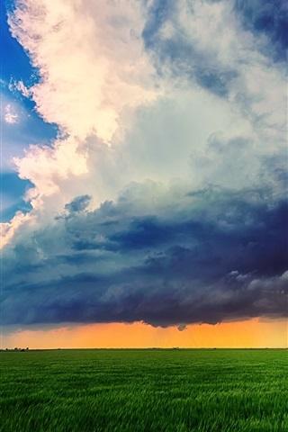 iPhone Wallpaper Farm field, sky, clouds, summer