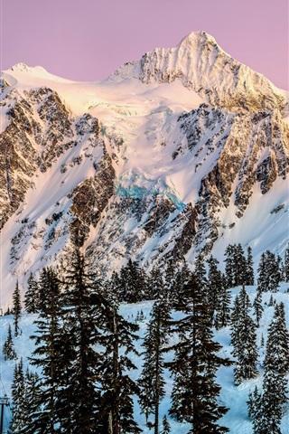 iPhone Обои Северной Америки, Вашингтон, Shuksan горы, снег, зима, деревья, сумерки