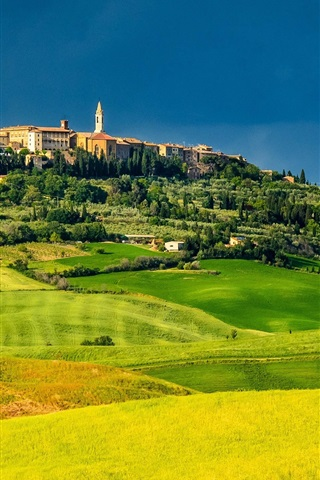 iPhone Wallpaper Pienza, Tuscany, Italy, fields, trees, houses, green