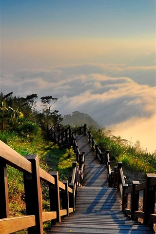 iPhone Wallpaper Taiwan landscape, mountain top, wood stairs, sun