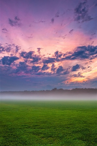iPhone Wallpaper Germany, fields, trees, grass, mist, sunset, sky, clouds