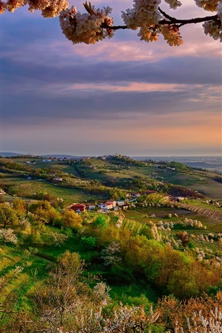 iPhone Wallpaper Italy, Lombardy, Collio at spring, valley, dusk, flowers, trees