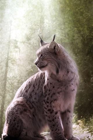 iPhone Wallpaper Lynx, wild cat, forest, light