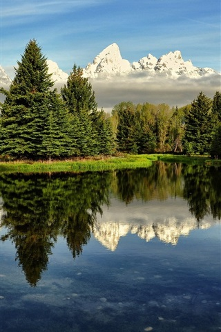 iPhone Wallpaper Nature scenery, lake, trees, water reflection