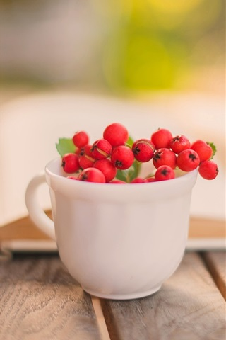 iPhone Wallpaper Still life, book, cup, red berry