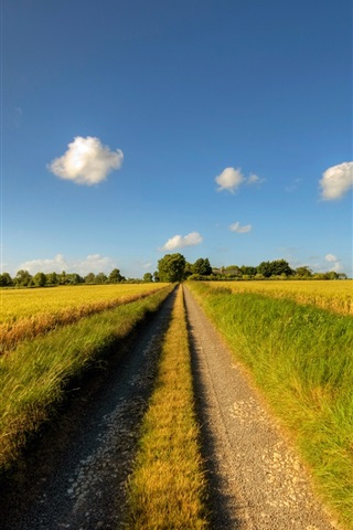 iPhone Wallpaper Footpath, road, sunny day, fields, clouds, summer