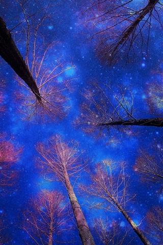 iPhone Wallpaper Winter snow, sky, night, trees, blue