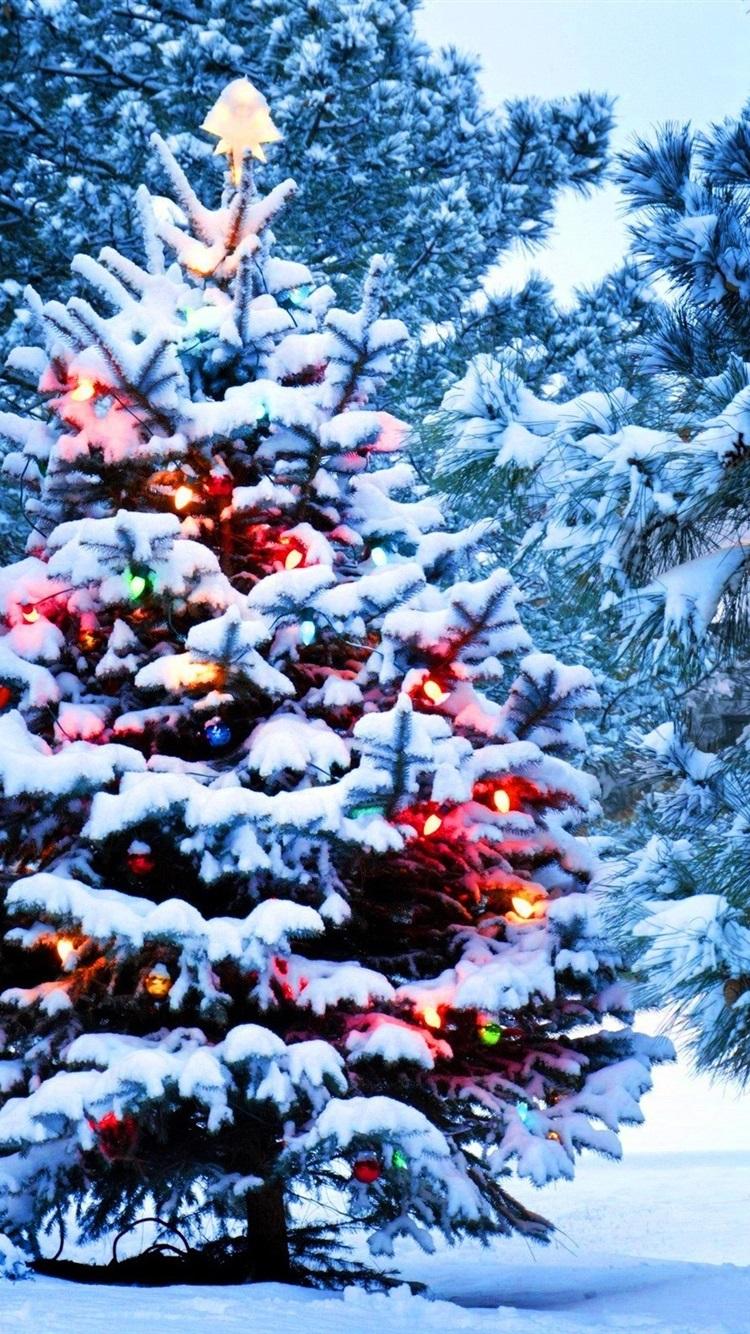 Weihnachten, Schnee, Neujahr, Weihnachten, Lichter 750x1334 iPhone 8 ...