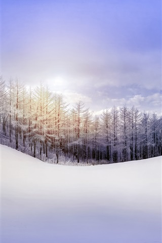 iPhone Wallpaper Nature winter, forest, snow, hill, sky, sun rays