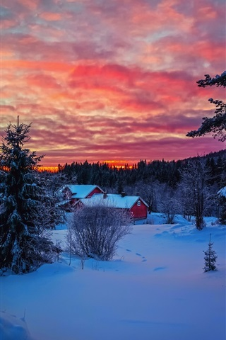 iPhone Wallpaper Winter evening sunset, sky, clouds, snow, forest, house
