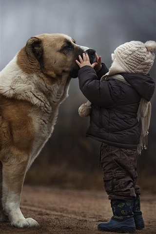 iPhone Wallpaper Child with dog, friendship
