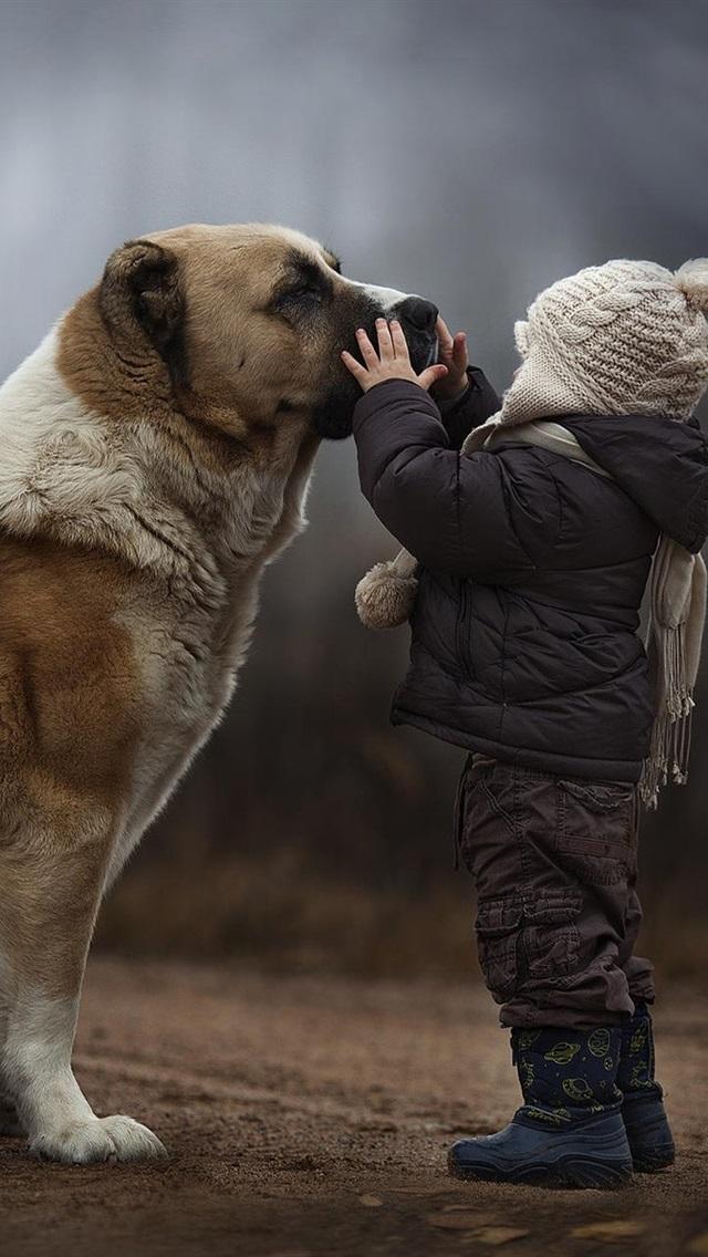 壁紙 犬 友達の子供 19x10 Hd 無料のデスクトップの背景 画像