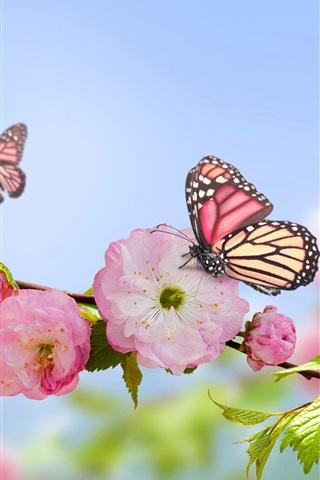 iPhone Wallpaper Spring, pink flowers, butterflies, blue sky