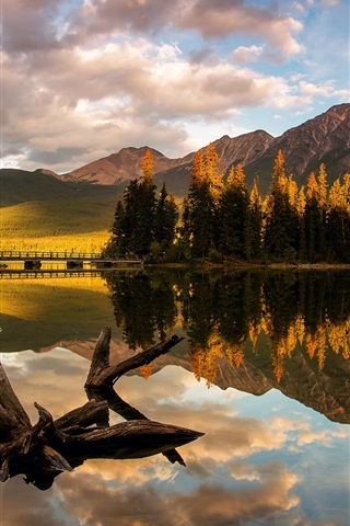 iPhone Wallpaper Canada, Jasper National Park, Pyramid Lake, trees, mountain, morning light