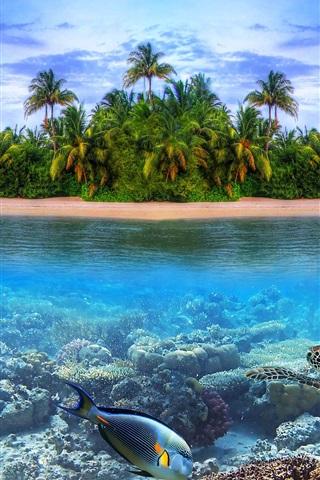 iPhone Wallpaper Coast landscape, island, sea, palm trees, fish, turtle