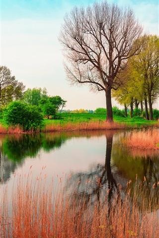 iPhone Papéis de Parede Inglaterra, primavera, árvores, rio, grama