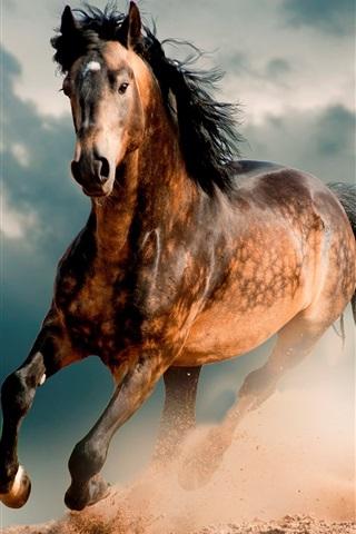 iPhone Wallpaper Horse, mustang, desert, gallop
