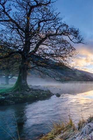 iPhone Wallpaper Morning landscape, mountain, river, trees, grass, frost