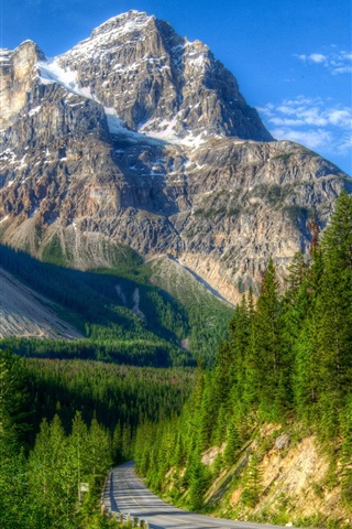 iPhone Wallpaper Mountains, road, forest, Canada, Yoho National Park