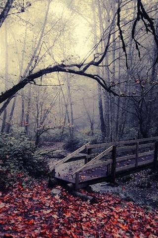 iPhone Wallpaper Autumn park, bridge, leaves, trees, stream