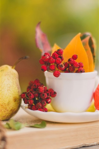 iPhone Wallpaper Still life, book, pears, leaves, cup, saucer, berries