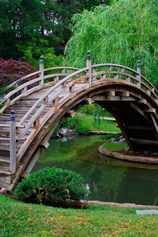 iPhone Wallpaper Park, trees, wood arch bridge, water, grass