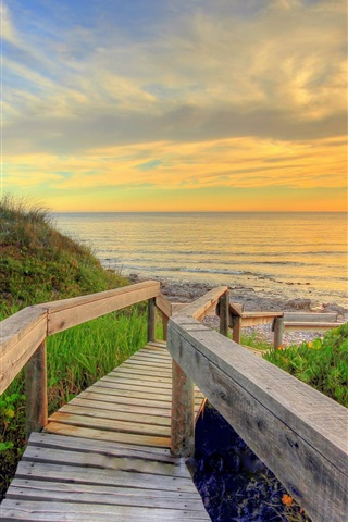 iPhone Wallpaper Sea, beach, wooden bridge, sun, morning