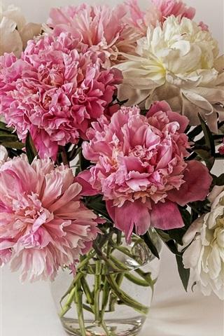 iPhoneの壁紙 牡丹の花束、白ピンクの花