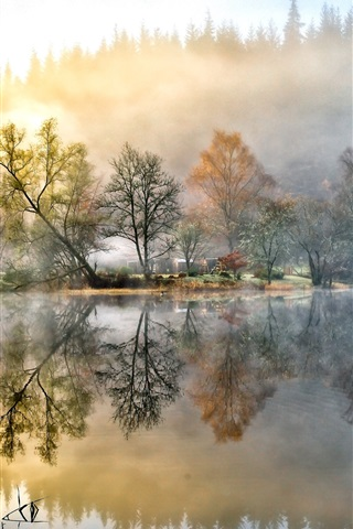 iPhone Wallpaper Beautiful painting, house, forest, lake, nature, morning, fog
