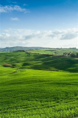 iPhone Wallpaper Green fields, grass, nature