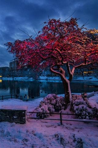 iPhone Wallpaper Norway, Rogaland, Stavanger, winter, snow, evening, lights, city, houses