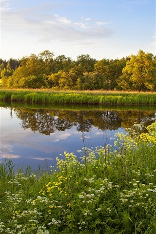 iPhone Wallpaper Russia, Tver, lake, grass, flowers, trees