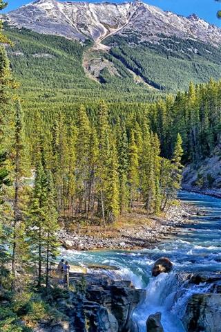 iPhone Wallpaper Sunwapta Falls, Jasper National Park, Alberta, Canada, trees