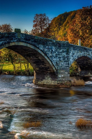 iPhone Wallpaper Bridge, house, river, autumn, forest