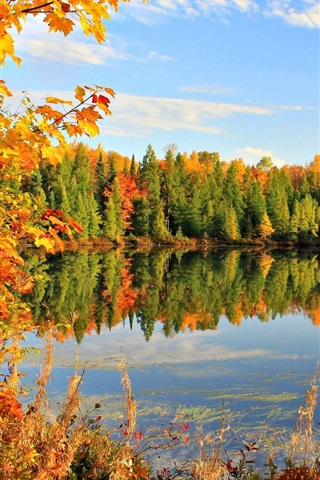 iPhone Wallpaper Golden autumn, fall, leaves, sky, pond, lake, clouds, trees