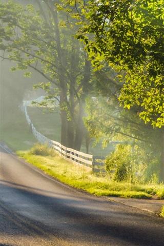 iPhone Wallpaper Morning landscape, road, fog, sunlight, trees